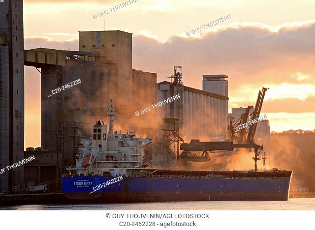 Grain carrier ship, with grain fodder silos in the background, through cereal dust, at sunset, Rouen Harbor, Winter time France