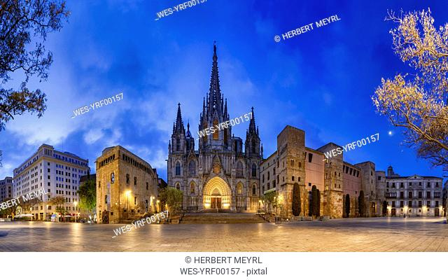 Spain, Barcelona, panoramic view of Barcelona Cathedral