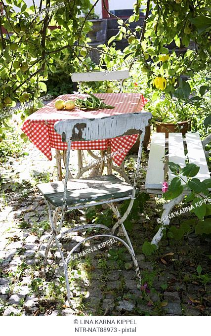 Table with chairs in garden