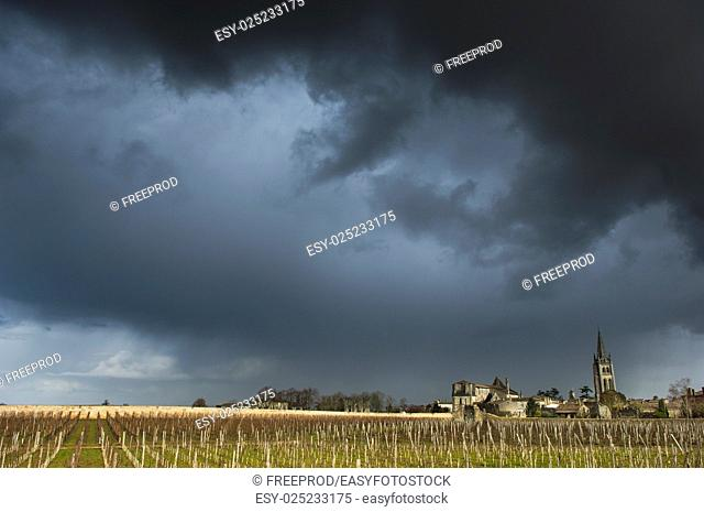 Vineyards of Saint Emilion with ruined church, Bordeaux, France, Europe