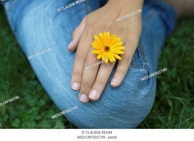 Hand of woman with blossom of pot marigold