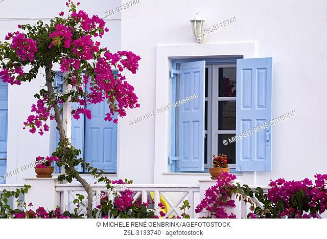 Traditional Greek home with pink bougainvillea flowers and blue windows in Oia, Santorini Greece