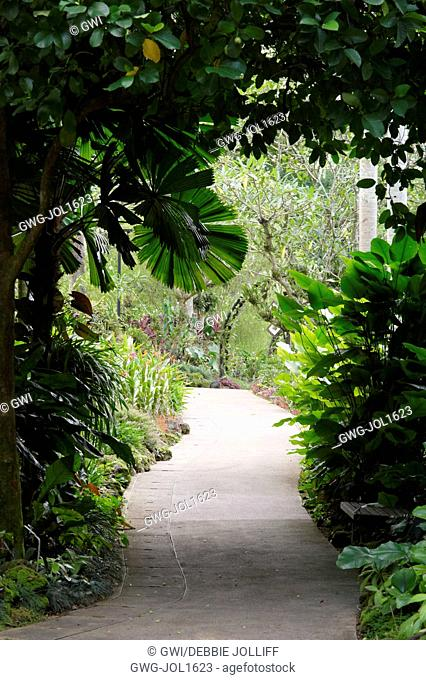 WALKWAY WITH CANOPY AT SINGAPORE BOTANICAL GARDENS