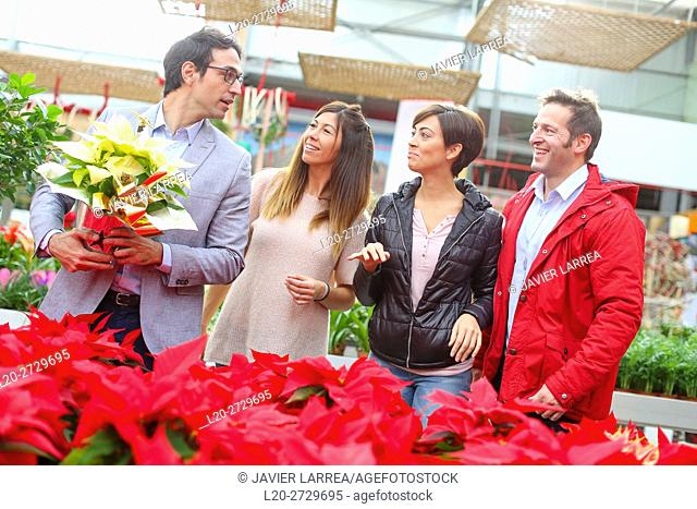 Couples buying poinsettias, christmas, garden center