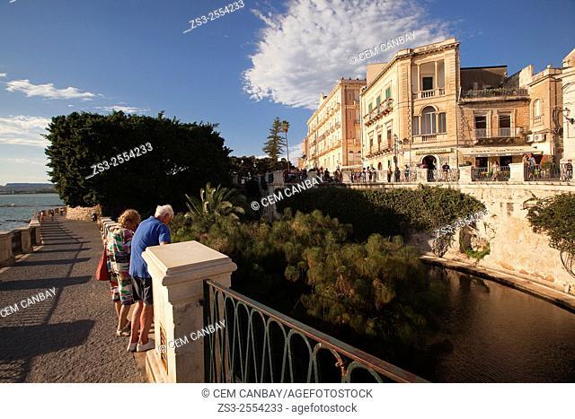 Tourists near Fonte Aretusa, Isola di Ortigia, Syracuse, Sicily, Italy, Europe
