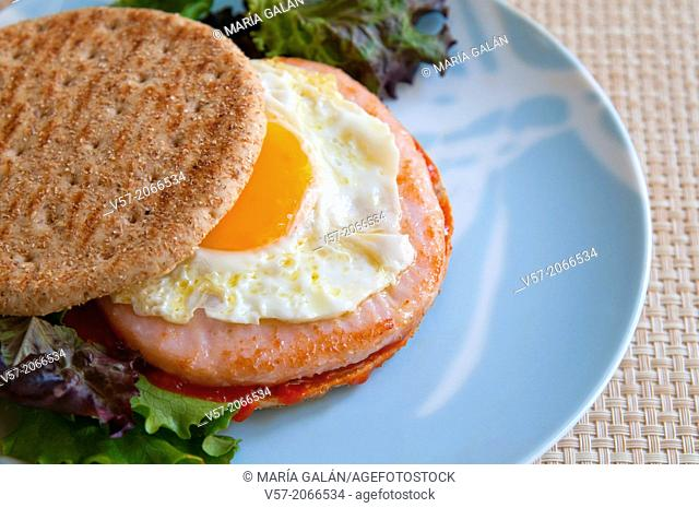 Healthy fast food: chicken hamburger and fried egg with wholemeal bread. Close view