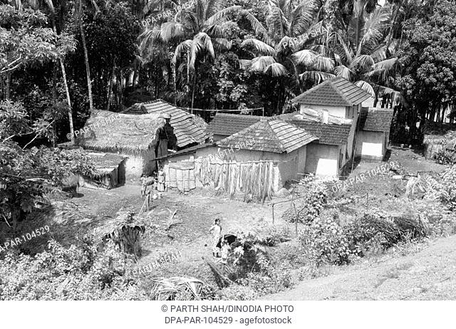 Traditional houses along west coast of India , Western Ghats , India
