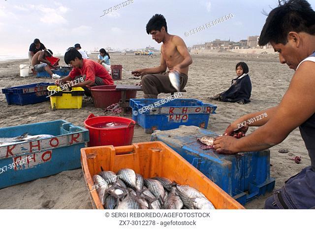Fishers in Huanchaco beach, Caballitos de Totora, Reed Boats, near Trujillo city, La Libertad, Peru
