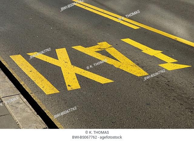 yellow taxi marking on the street