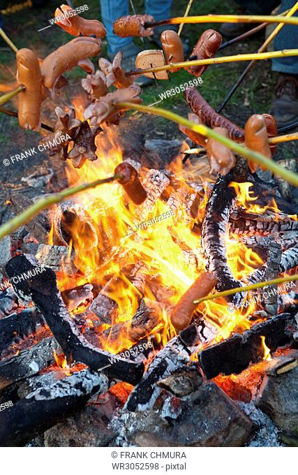People Grilling Sausages over Campfire Outdoors