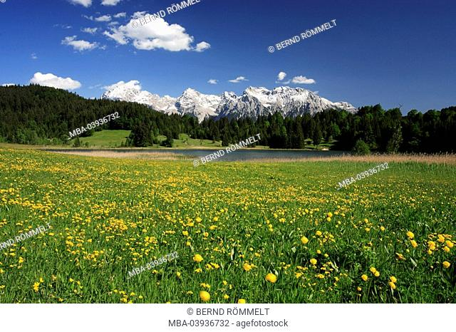 Germany, Upper Bavaria, Werdenfelser Land, spring-meadow, Gerold-Lake, Karwendel-mountains