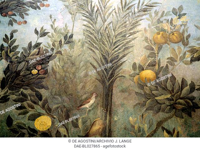 Pomegranate tree, detail from a fresco depicting a garden with fruit trees and birds, from the House of Livia on Palatine hill, Rome, Italy