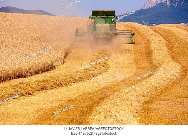 Agricultural machinery  Combine harvester on field of wheat  'Learza' estate  Near Estella, Navarre, Spain
