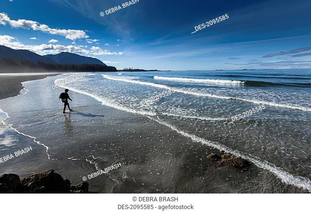 A man walks along the sandy beach of rugged point marine park in a remote area of the west coast of vancouver island, british columbia canada