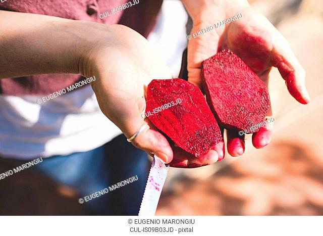 Woman's hand holding halved fresh beetroot in garden