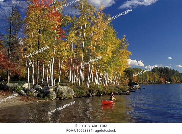 canoeing, Vermont, VT, Woman paddles a red canoe along Boulder Beach on Lake Groton in Groton State Forest in the fall