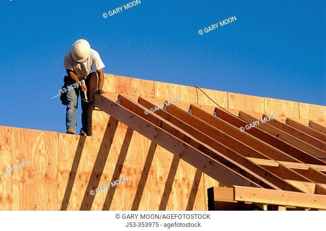 Carpenter. East Antelope, California. USA