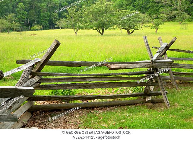 Fenceline at Wick Farm, Morristown National Historic Park, New Jersey