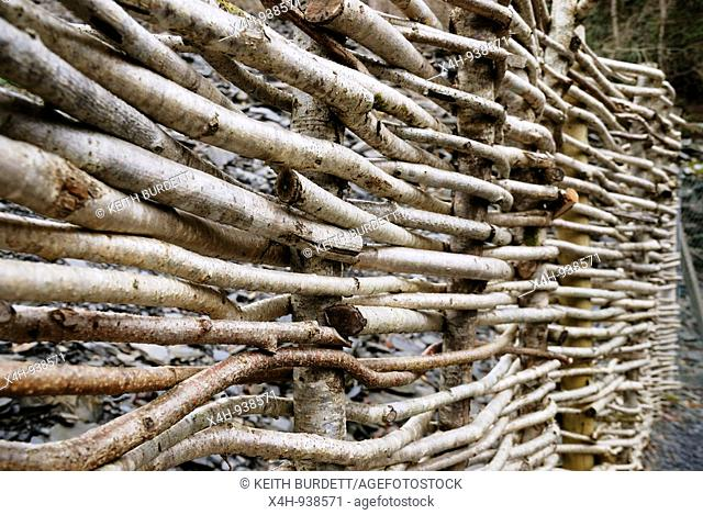 Fencing made from woven Hazel stems, Wales