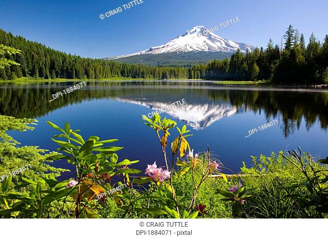 reflection of mount hood in trillium lake in the oregon cascades, oregon, united states of america