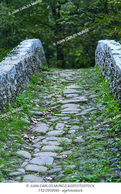"Baroque Style """"Roman"""" bridge, 18th Century, Mirones, Miera Valley, Valles Pasiegos, Cantabria, Spain, Europe"