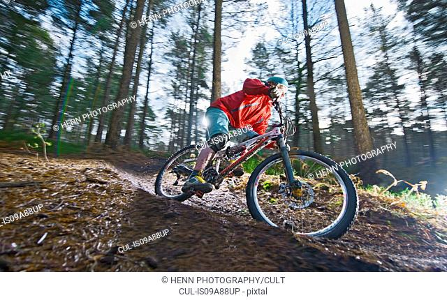 Mid adult man on mountain bike in forest