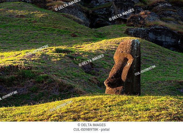 Detail of Rano Raraku moai statue on Easter Island