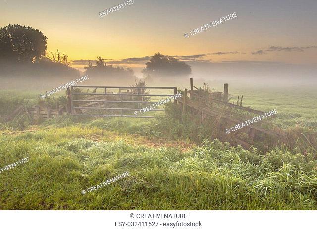 Gate and fences in Foggy farmland during sunrise in september, Drenthe Netherlands
