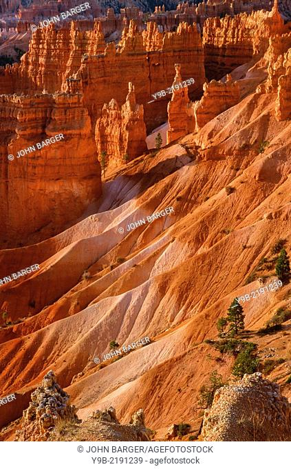 Eroded hoodoos, ridges and valleys, from Sunrise Point, Bryce Canyon National Park, Utah, USA