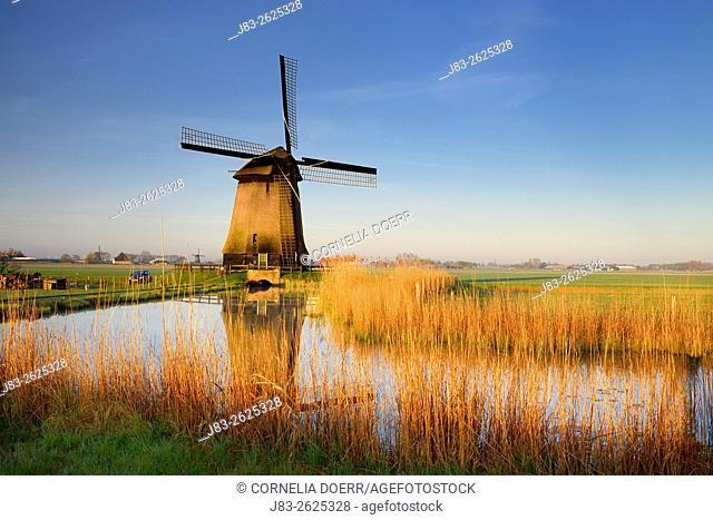 Traditional dutch windmill, Schermerhorn, Netherlands, Europe