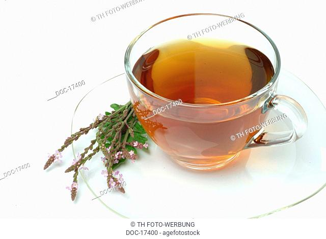 medicinal tea - Vervaintea - Holy herb tea - cup of herbtea - Verbena officinalis - Verbena comune - te