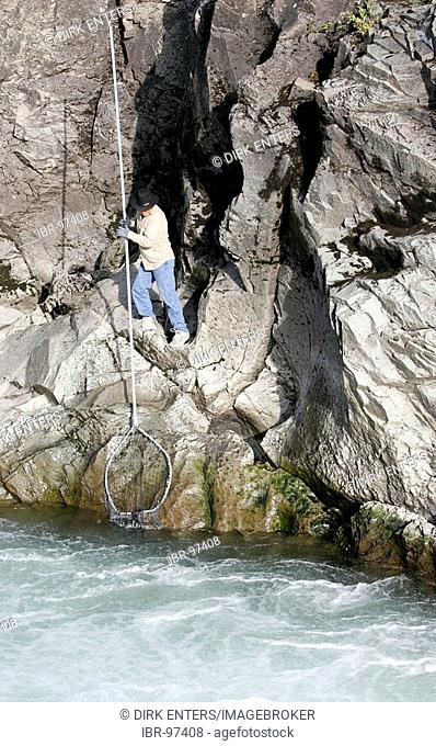 Indian is fishing for salmon with a long stack and a net at Bulkley River in Morristown, British Columbia, Canada