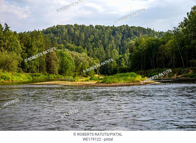 Landscape of flowing river, green forest and blue sky. Gauja is the longest river in Latvia, which is located only in the territory of Latvia