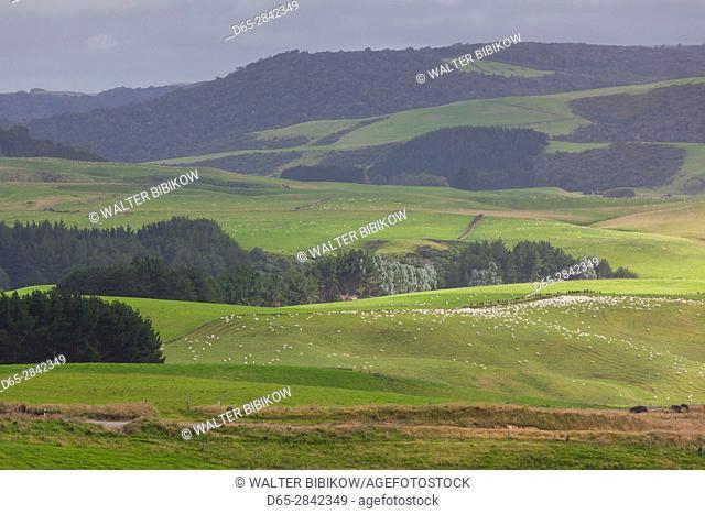 New Zealand, South Island, Southland, The Catlins, Fortrose, landscape
