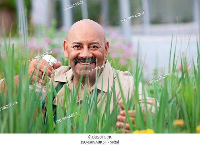 Mature man using insecticide on plants in greenhouse, portrait