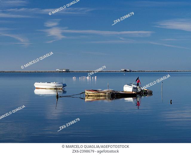 Mussel breeding platforms, small group of flamingoes and fishing boat at Alfacs Bay. Ebro Delta Natural Park. Tarragona Province, Catalonia, Spain