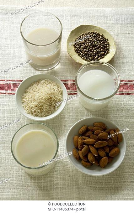 A glass of hemp milk, rice milk and almond milk and bowls of hemp seeds, rice and almonds