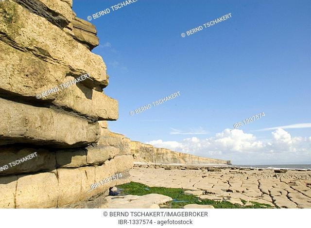 Layered rocks, cliffs, coast, Nash Point, Glamorgan Heritage Coast, South Wales, Wales, United Kingdom, Europe
