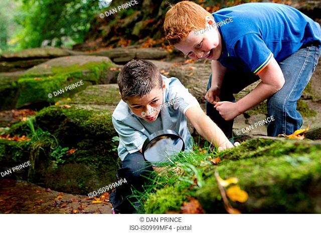Two boys looking through a magnifying glass in a woodland