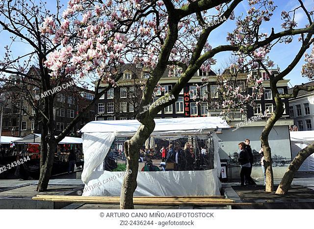 Street market in the Rembrandtplein Rembrandt Square. Amsterdam, Netherlands