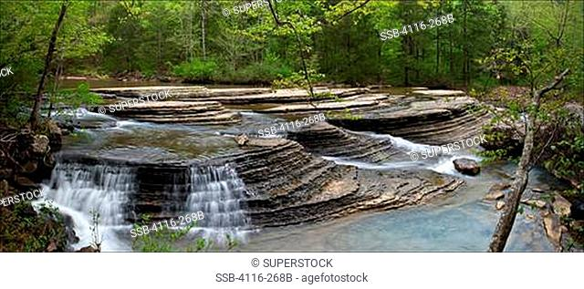 Creek flowing in a forest, Falling Water Creek, Ozark Mountains, Ozark National Forest, Arkansas, USA