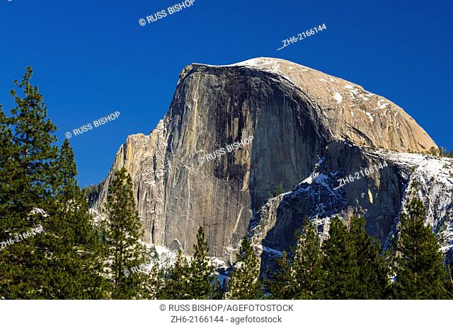 Afternoon light on Half Dome, Yosemite National Park, California USA