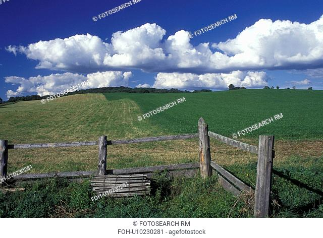 Vermont, VT, Field, split rail fence and white puffy clouds in Cabot in the springtime