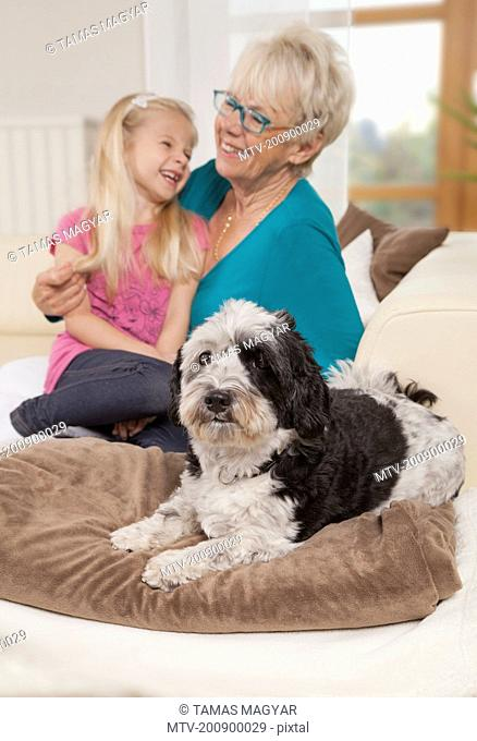 Senior woman with dog and granddaughter laughing in a living room, Bavaria, Germany