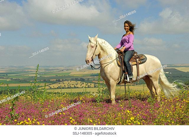 rider on Lusitano