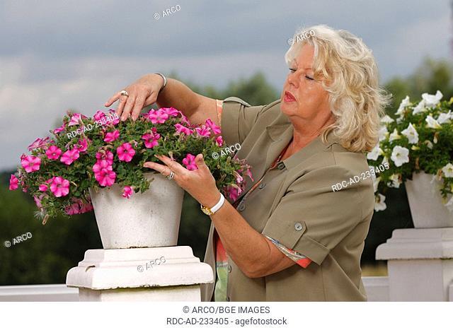 Woman and petunia, Petunia hybride