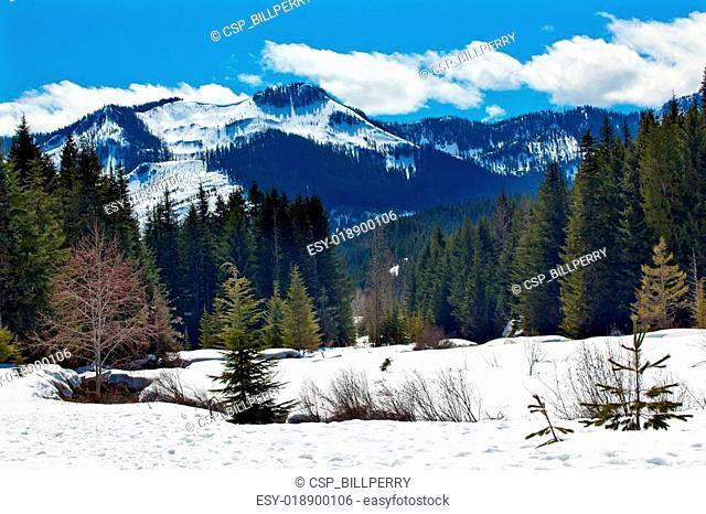 Gold Creek Mount Hyak Spring Snow Snoqualme Pass Washington