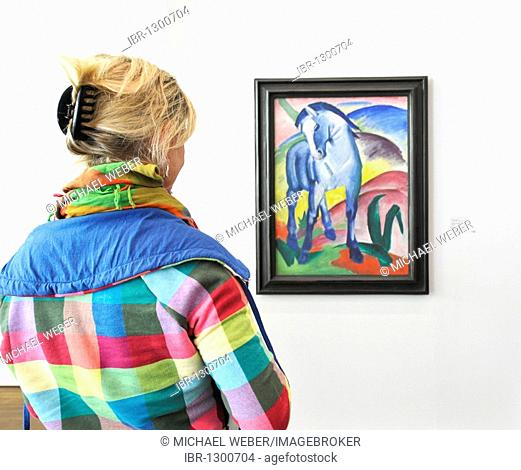 Visitor at the Frieder Burda Museum looking at the painting Blaues Pferd I, Blue Horse I, 1911, oil on canvas by Franz Marc, special exhibition
