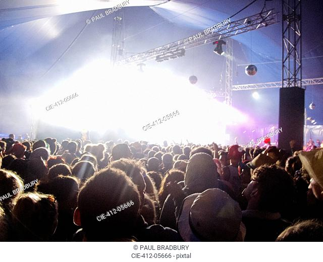 Fans facing illuminated stage at music festival