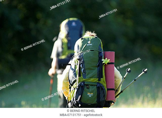 Hiker in the Bavarian foothills, Bavarian Alps, Bavaria, Germany